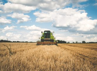 a combine in a wheat field