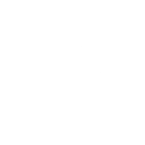 white gavel icon